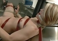 Cute Ash Hollywood got pounded very hard