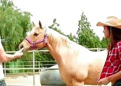 Gabriella is amuse to a big cock cowboy